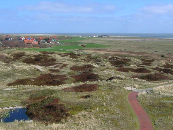 Spiekerooger Dorf und Hafen